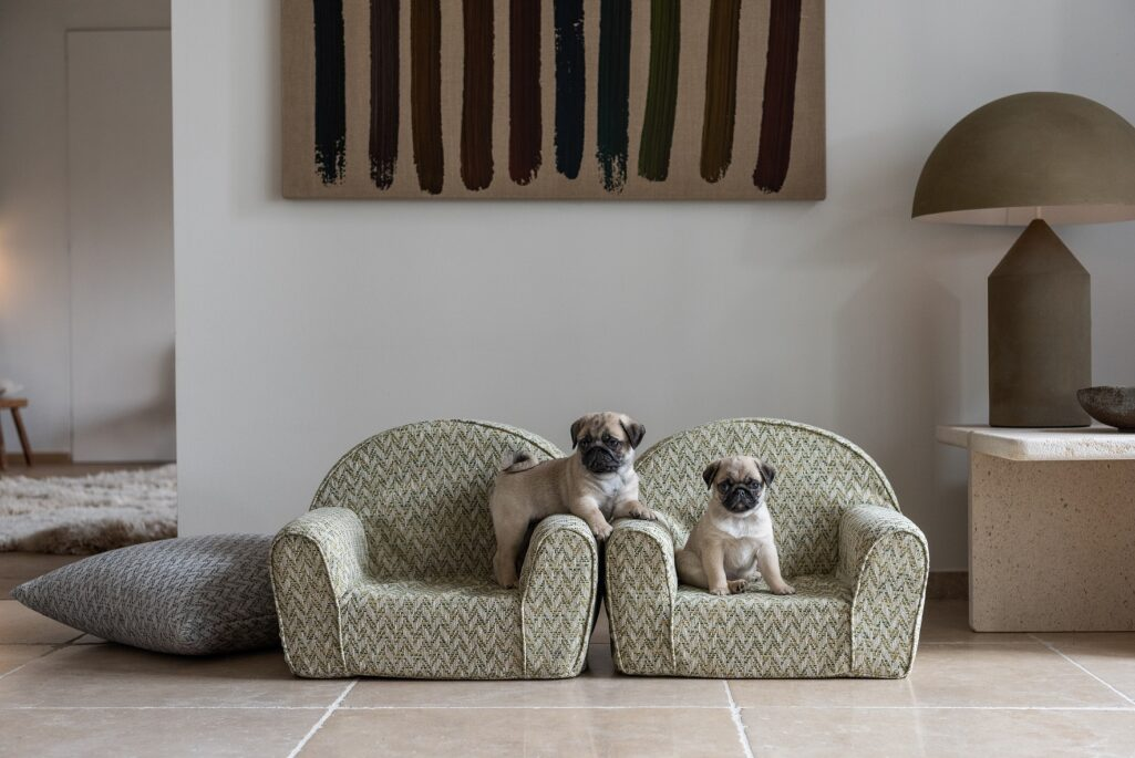 Cute pugs on easy clean upholstery pet couches